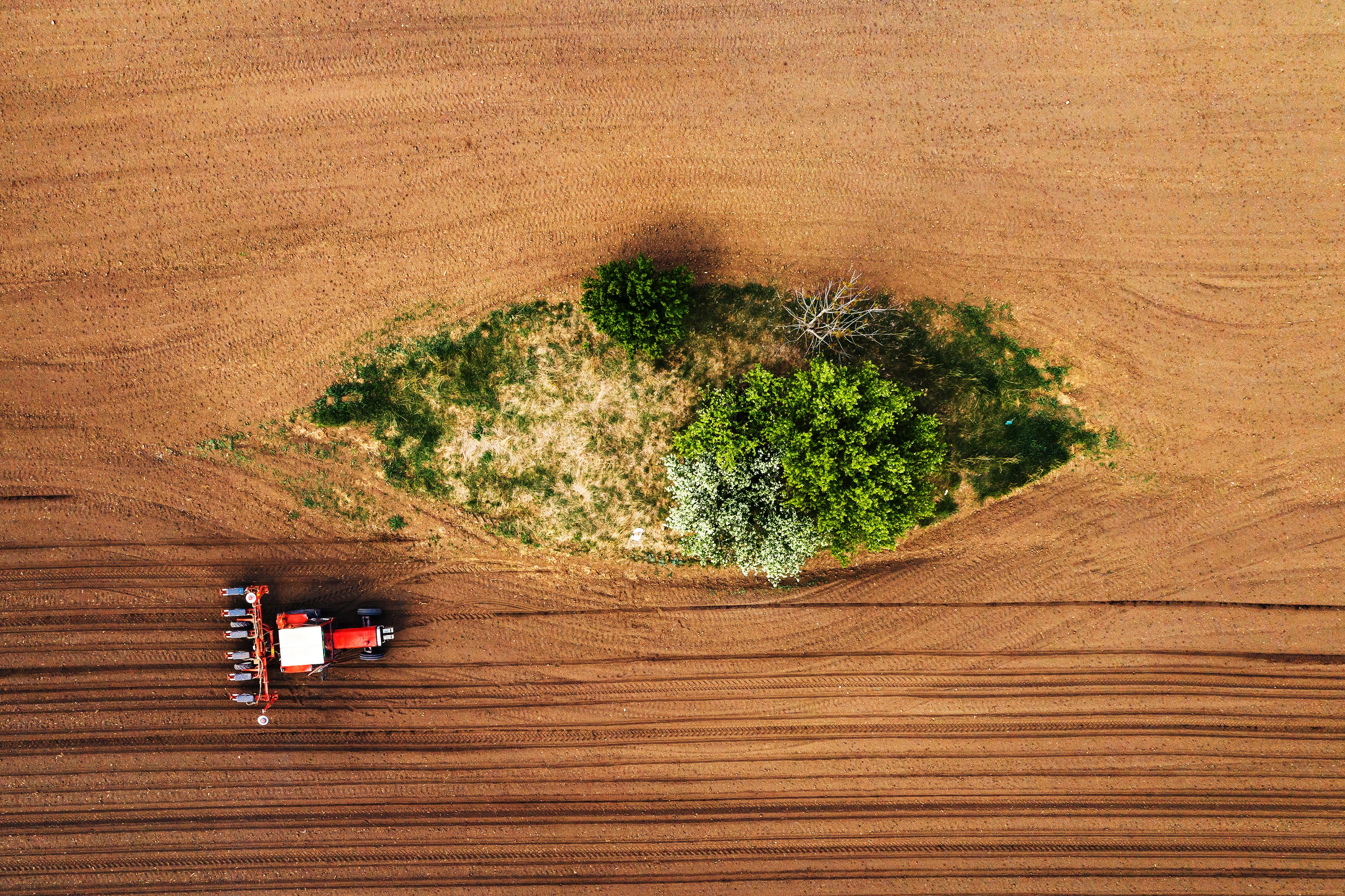 Retrocessos na política ambiental brasileira são precedidos de diminuição na transparência e participação social do setor
