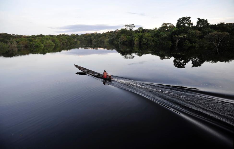 Serviços geoespaciais podem apoiar a gestão ambiental inteligente na Amazônia brasileira