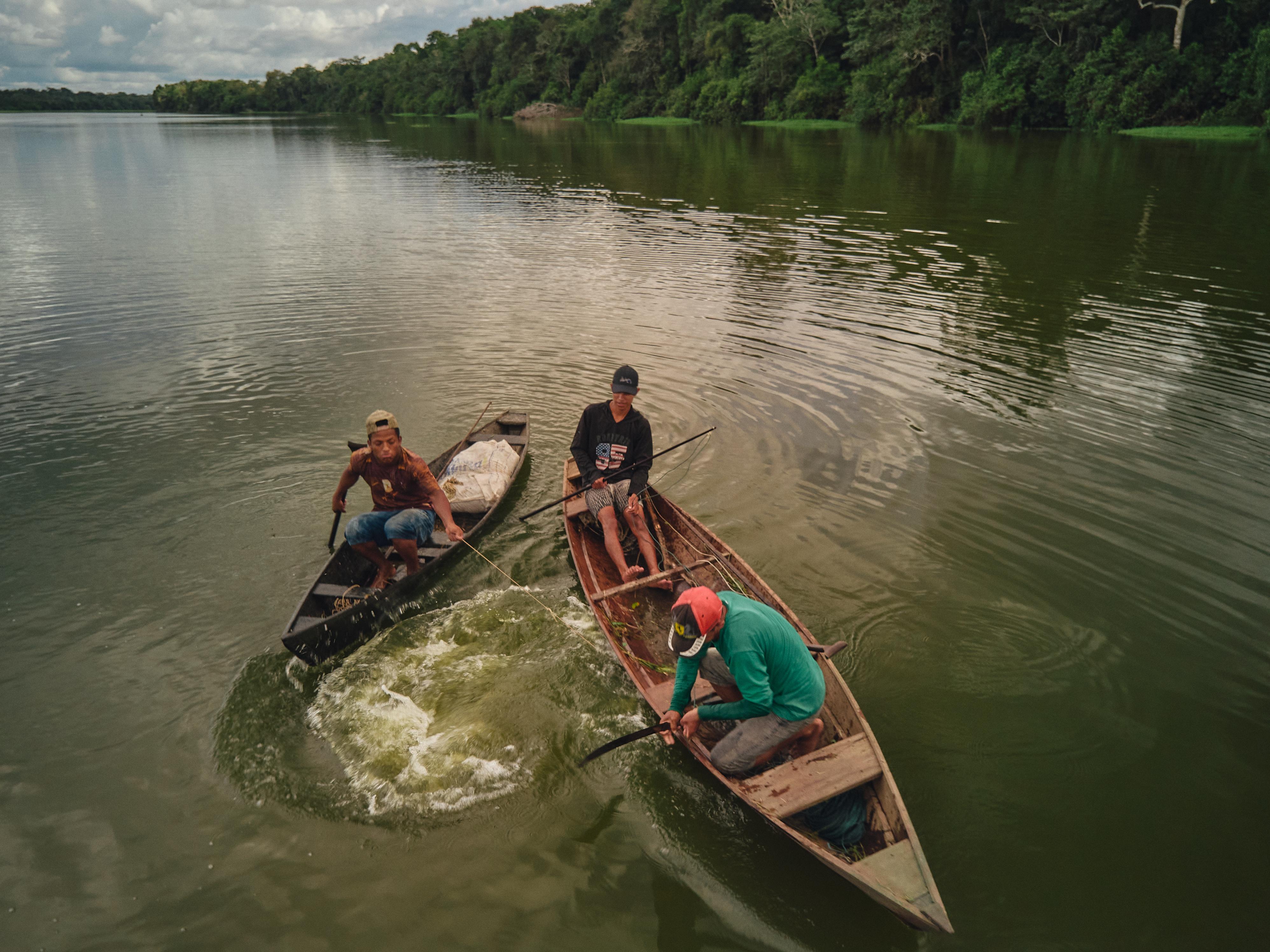 Comunidade indígena aplica sistema inovador para divisão de renda do manejo do pirarucu