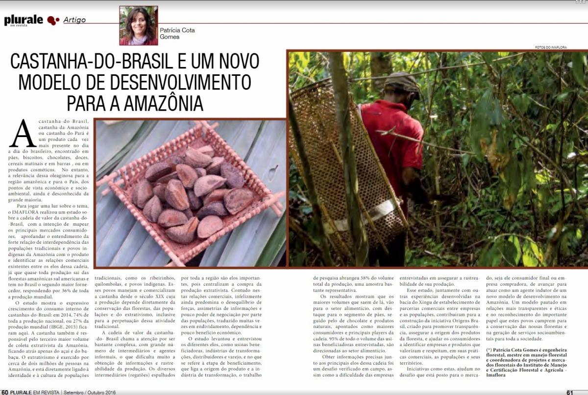 Castanha-do-Brasil: estratégia para a Amazônia, para o Clima e para o desenvolvimento florestal sustentável