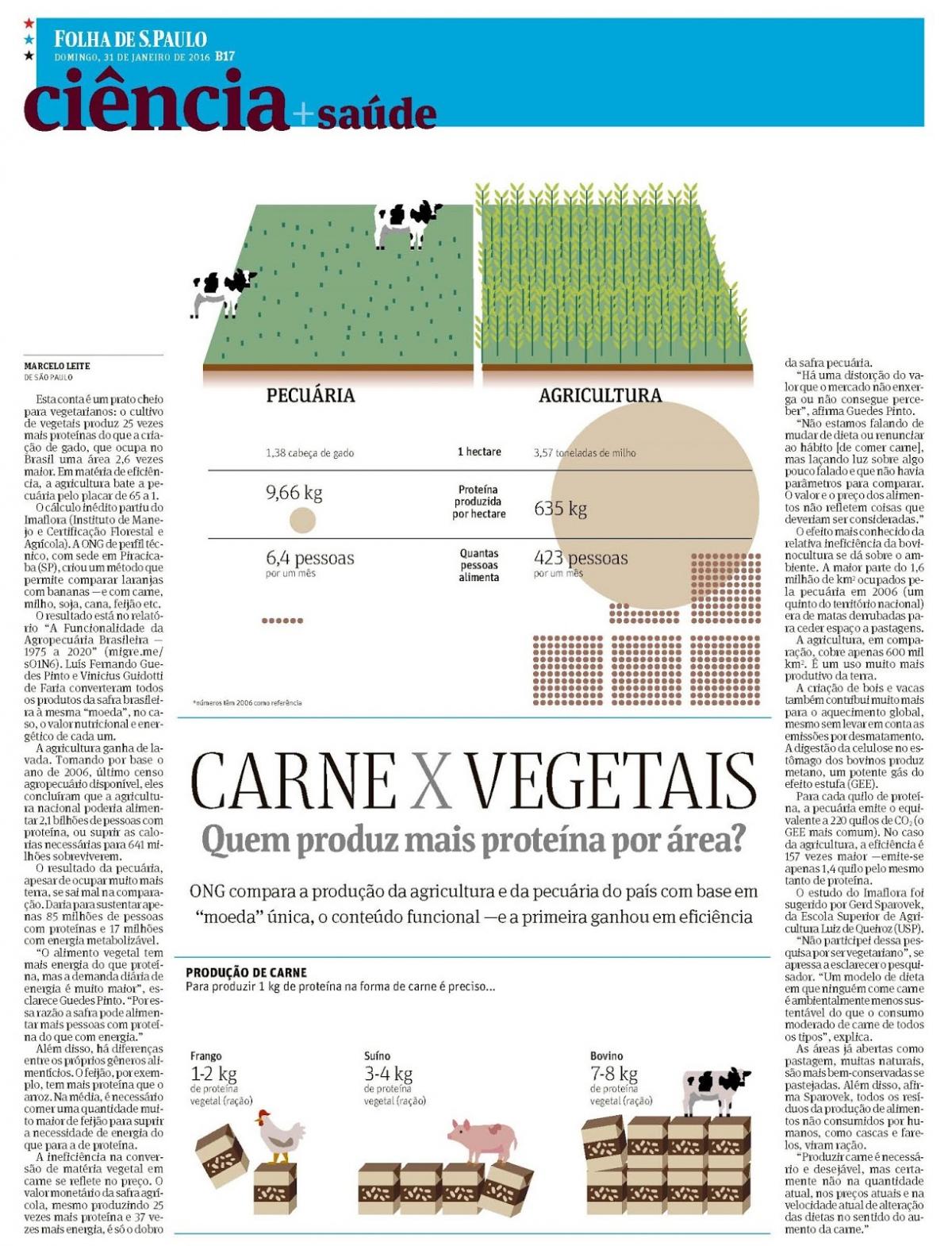 Carne x Vegetais - Quem produz mais proteína por área?