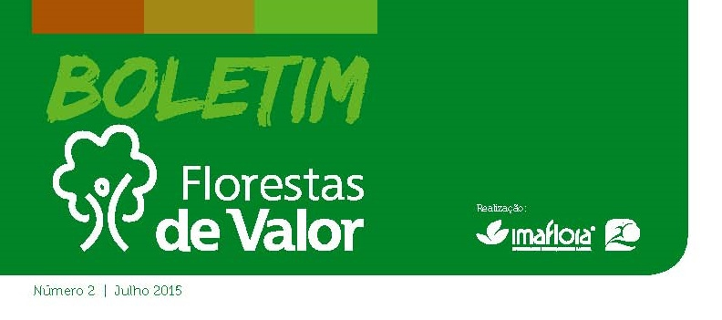 Lançado o segundo boletim do Florestas de Valor
