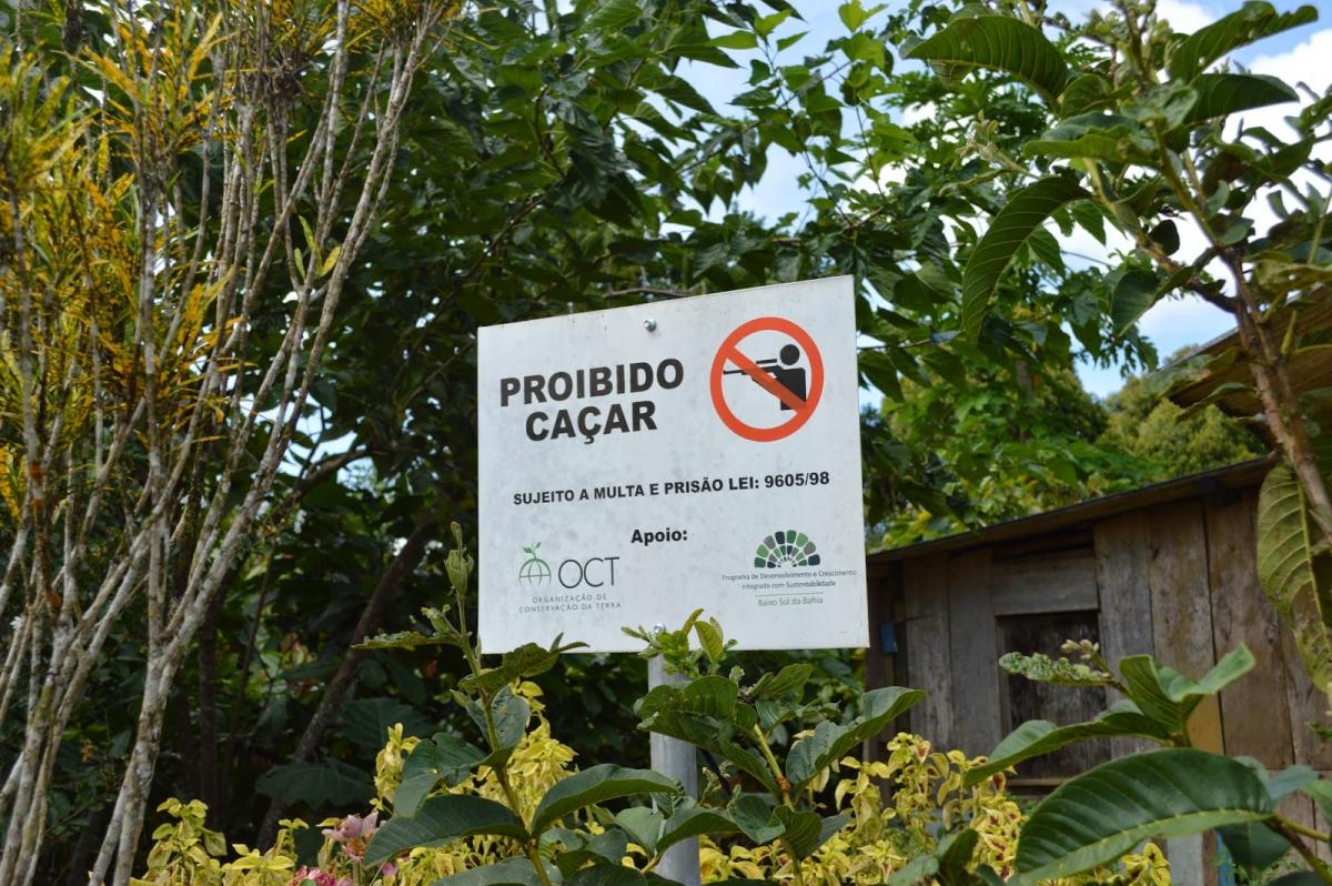 Aprimoramento de técnicas leva agricultores familiares, do Baixo Sul da Bahia, a conquistarem certificação internacional para o cacau