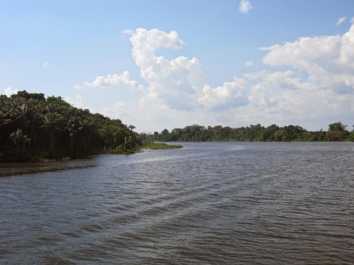 Coalizão de ONGs pede compromisso dos presidenciáveis para a conservação do patrimônio natural brasileiro
